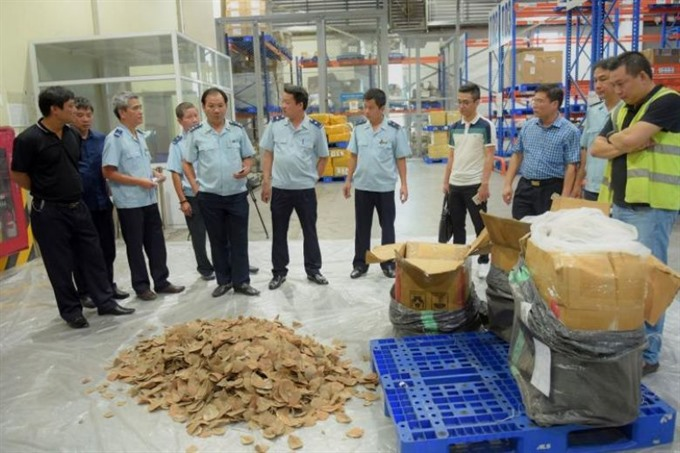 Hà Nội airport seizes tonne of pangolin scales and ivory