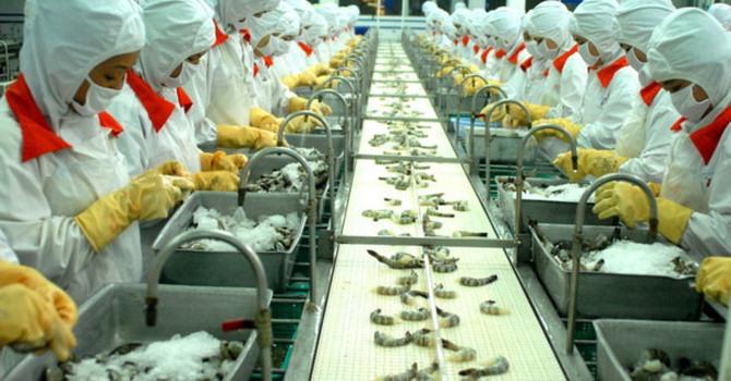 Bumper harvest boosts fisheries profits shares