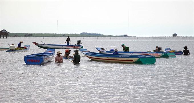 Cà Mau develops sea-based economy builds bigger fishing ships