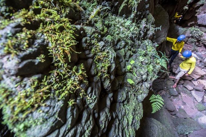 Quảng Bình debuts new tours to magnificent cave