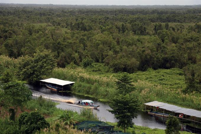 Việt Nams wetlands under threat