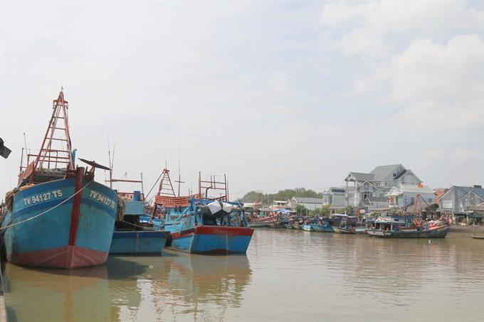 Trà Vinh fish catch down income steady