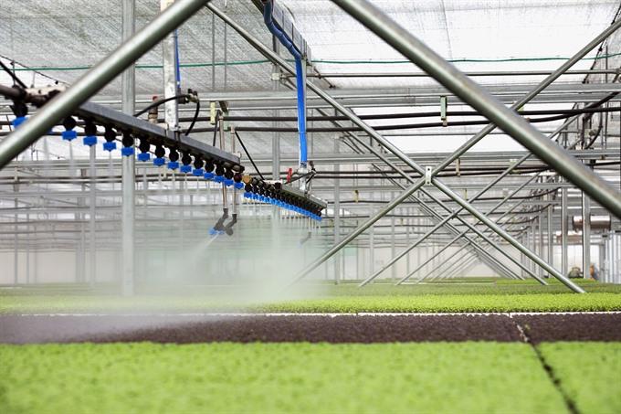 Bà Rịa – Vũng Tàu seeks to develop high-tech agriculture