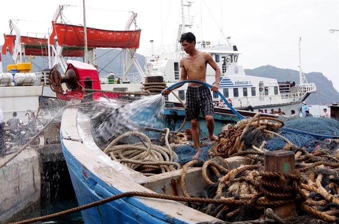 Bà Rịa-Vũng Tàu works to remove ECs yellow card on aquatic products