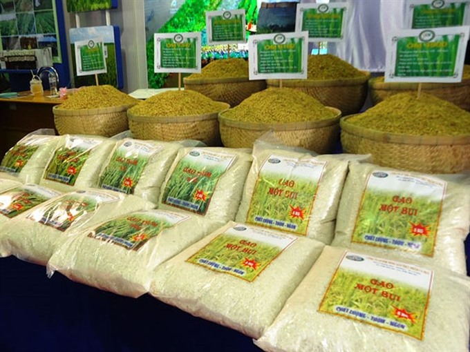 Chinese rice importers visit Việt Nam to find new partners