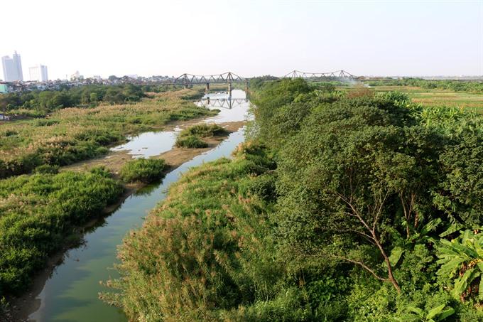 Nostalgic Future: Turning Banana Island into Green Lungs of Hà Nội