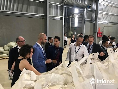 Factory processing export coffee opens in Sơn La