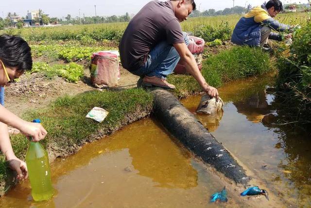 Thanh Hoa oil spill affecting thousands