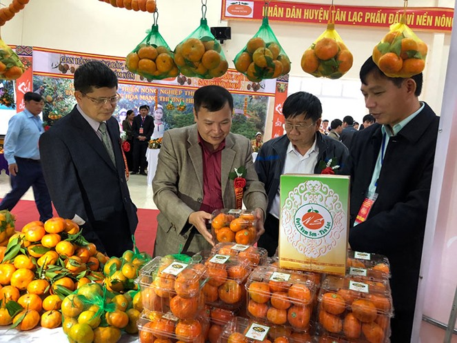 Hòa Bình tangerine variety granted collective trademark