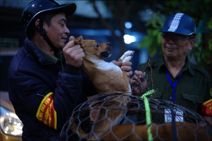 Dog crackdown welcomed by residents