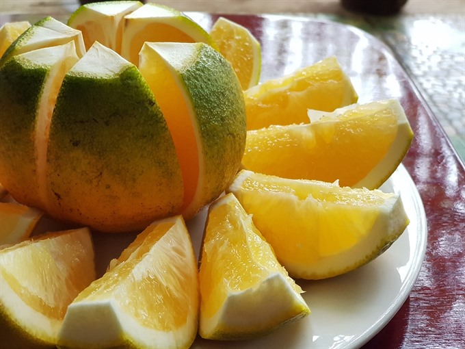 Cao Phong oranges to be served on Vietnam Airlines flights