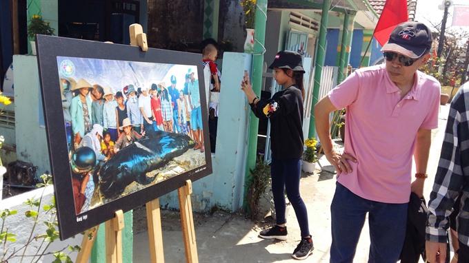 Tết lures tourists to Đà Nẵng Quảng Nam