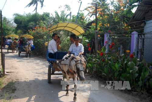 Bến Tre outlines plan to promote tourism investment