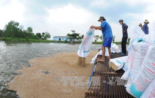 Tiền Giang develops freshwater aquaculture
