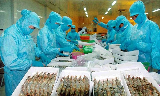 VASEP rejects DoCs preliminary results on Vietnamese shrimp