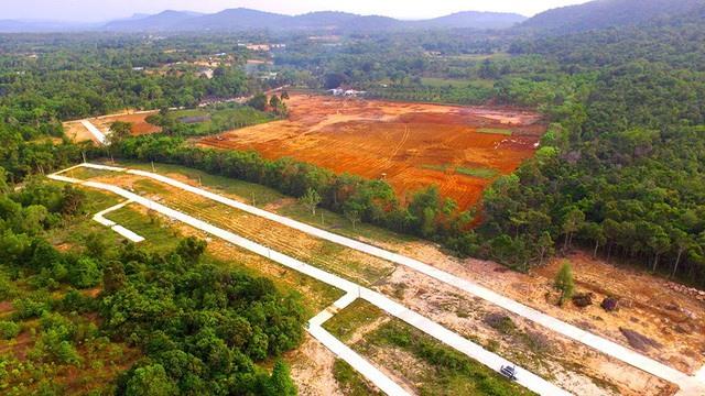 Phú Quốc struggles to control land speculation