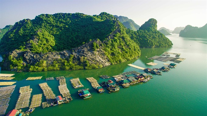 Challenges face Hạ Long Bay-Cát Bà nomination