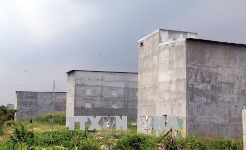 State promotes birds nest farms