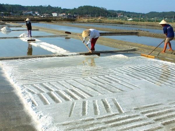 Salt prices hit 10-year high