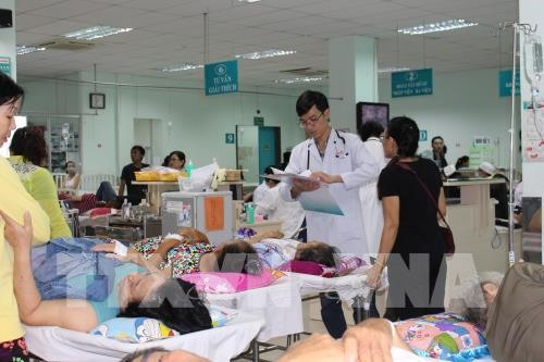 8000 admitted for emergency treatment in HCM City