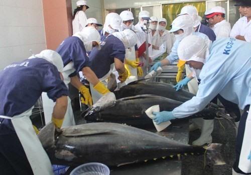 Việt Nams seafood exports to EU fall