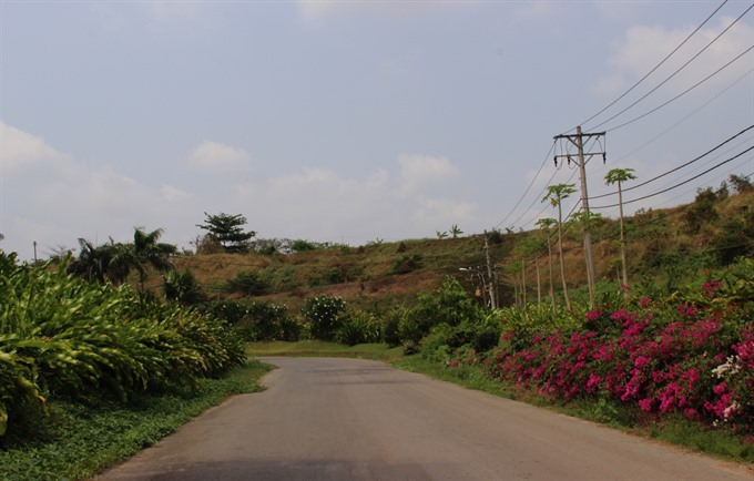 HCM City landfill grows into orchard