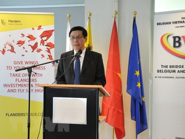 Belgian businesses seek cooperation opportunities in Việt Nam