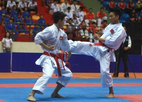 Hà Nội triumph at national karate champs