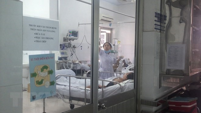 No mutations of A/H1N1 reported in Việt Nam