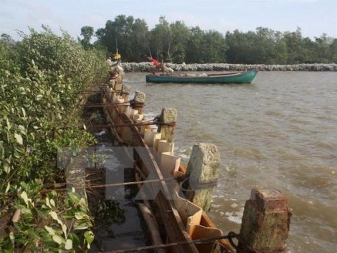 Cà Mau to build 2000m of sea embankments