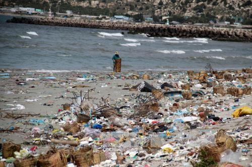 International partners join Việt Nam to combat plastic pollution