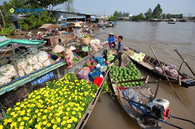 Tourism infrastructure needed to develop Cái Răng floating market