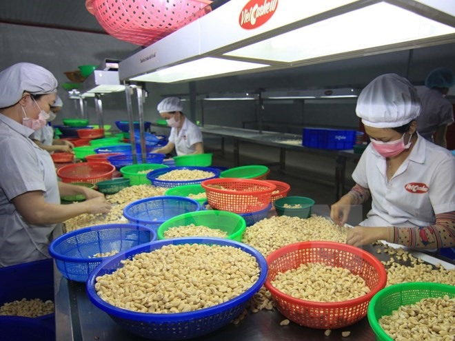 US-China trade war to hurt or benefit VN agriculture?