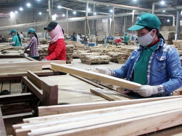 Increasing Chinese investment in wood industry concerns Vietnamese businesses