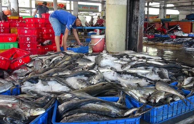 Fisheries sector strives to meet ECs requirements
