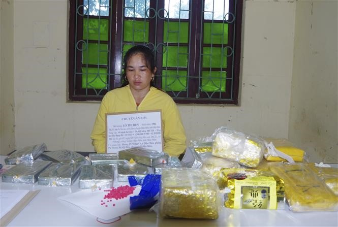 Drug trafficker nabbed in Điện Biên