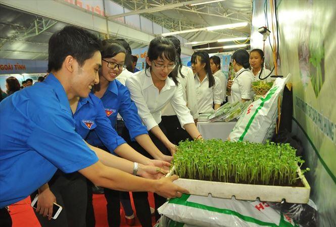 Bến Tre Province supports start-ups