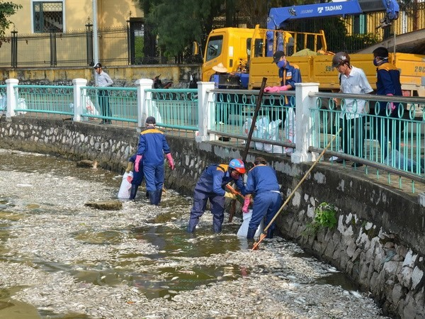 Hà Nộis West Lake hit by another mass fish death