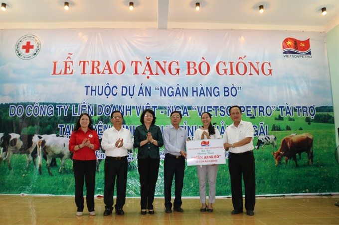 Poor families receive breeding cows in Quảng Ngãi Province