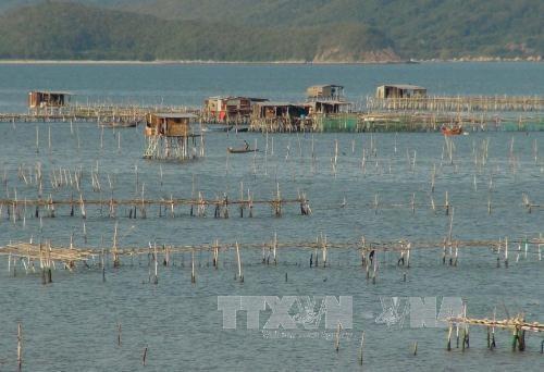 Khánh Hòa approves ambitious fisheries development plan