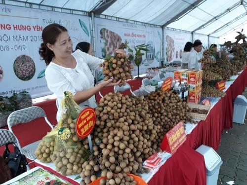 Hưng Yên longan week opens in Hà Nội