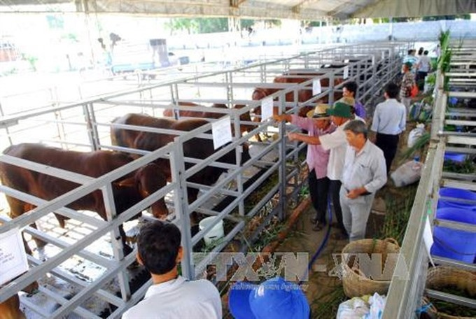 HCM City Party leader urges higher status in economy for agriculture