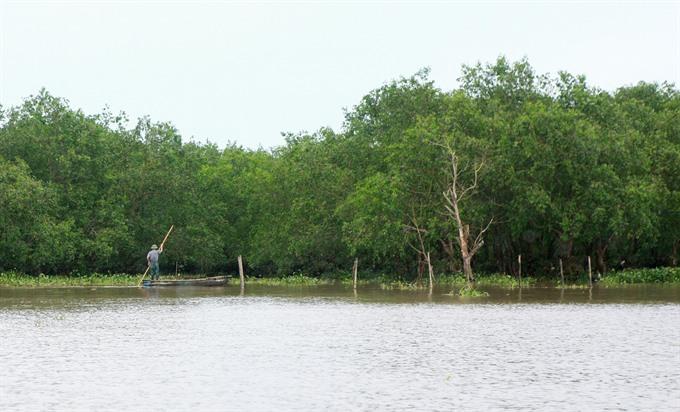 Efforts needed to preserve wetlands