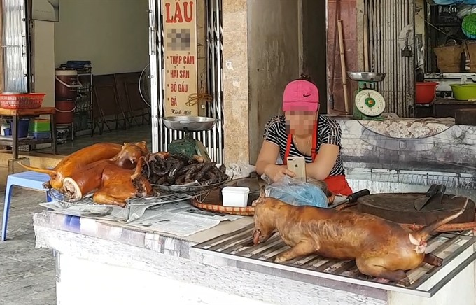 Hà Nội urges its citizens to stop eating dog meat