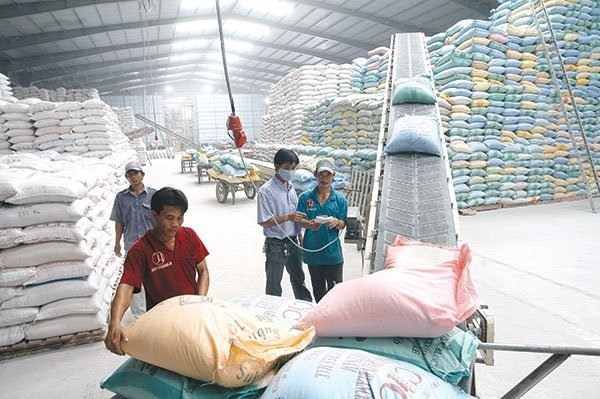 Việt Nam helds international conference on export rice