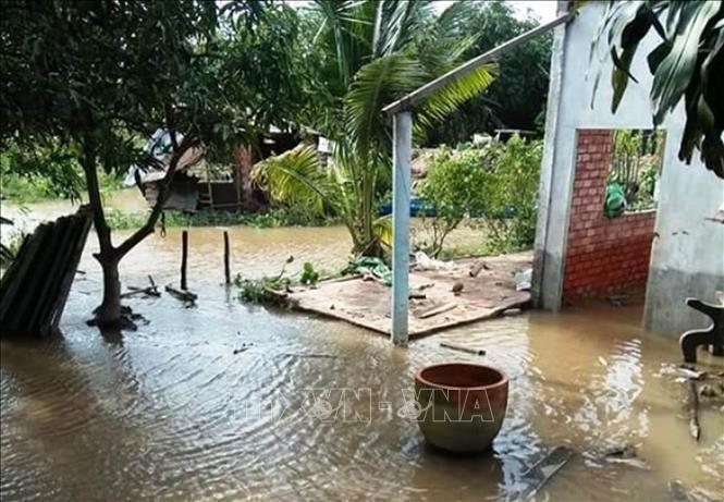 Bến Tre gets 6.3m from Govt to fight landslides