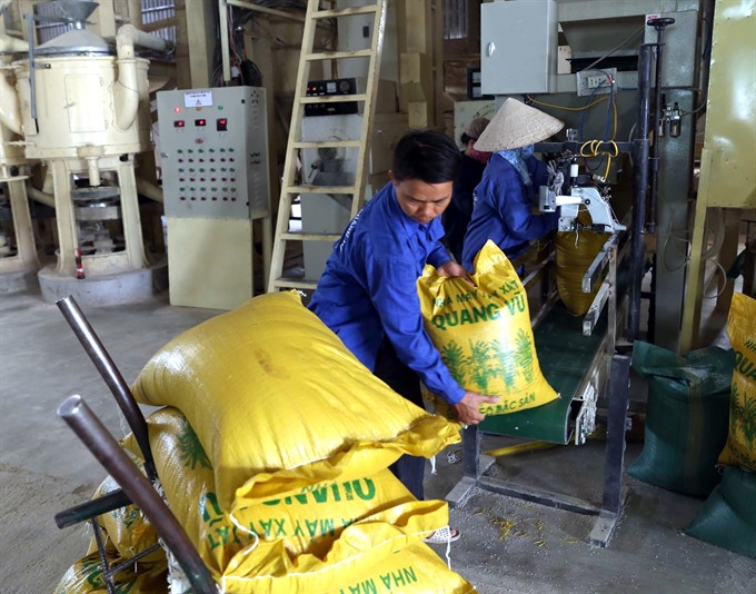 VN sees rice export growth by year-end