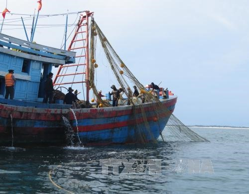 Black boxes installed on Cà Mau fishing ships