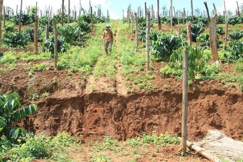 Land collapse discovered in area near Nhân Cơ Alumina Factory