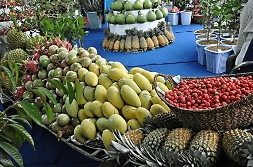 Investment in fruit vegetable processing surges as companies realise potential